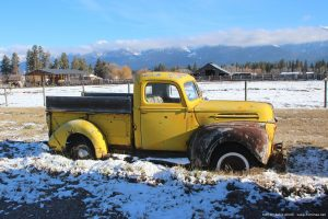 Old_Ford_pickup_truck_picture
